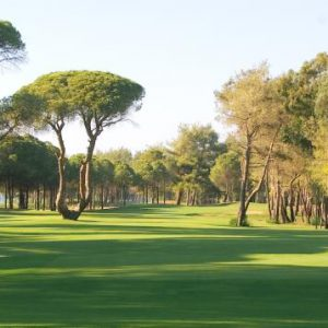 Kart - Kaya Palazzo Golf Club  - BesteGolfreiser AS (8)